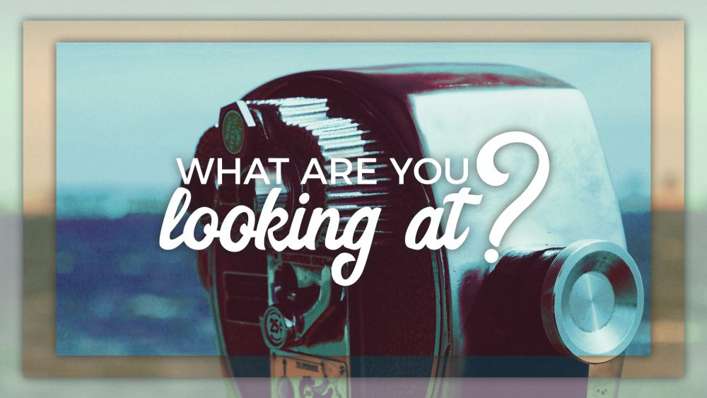 What Are You Looking At? Image