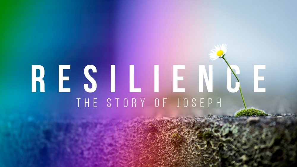 Resilience - Part 5 Image
